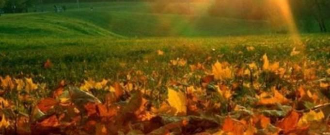 Погодные приметы на 9 октября