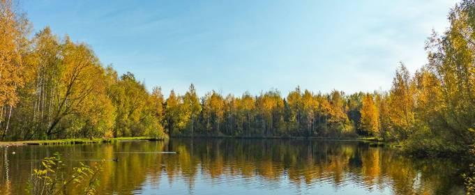 Погода в Украине на четверг, 15 октября