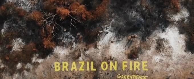 Статуя Болсонару на фоне выгоревших лесов Амазонии