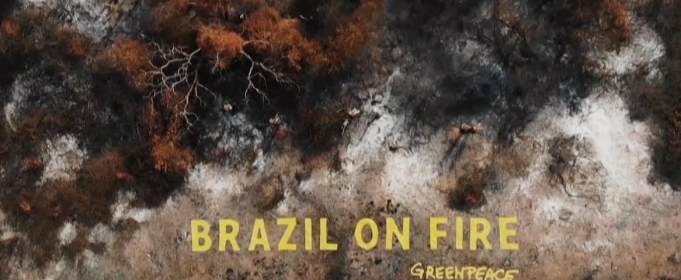 Статуя Болсонару на тлі вигорілих лісів Амазонії