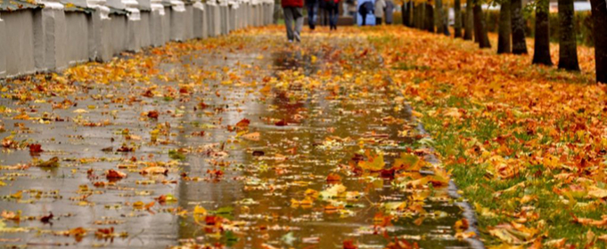 Погода в Украине на пятницу, 16 октября