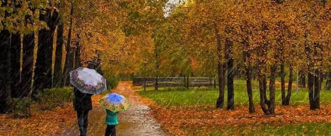 Погода в Украине на субботу, 17 октября