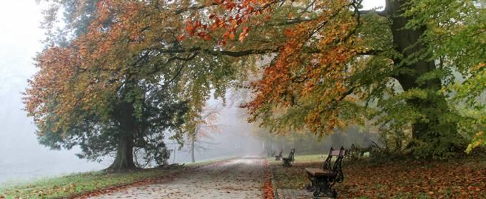 Погодні прикмети на 17 жовтня