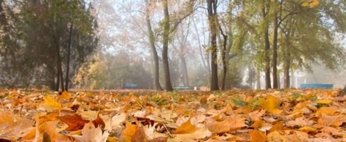 Погода в Україні на неділю, 18 жовтня