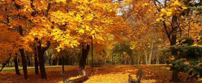 Погода в Україні на понеділок, 19 жовтня
