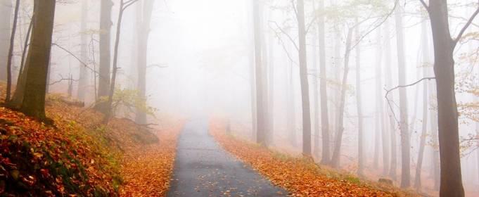 Погода в Україні на вівторок, 20 жовтня
