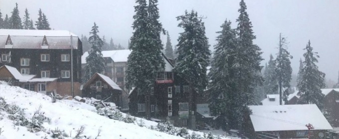 На Драгобрате выпал снег