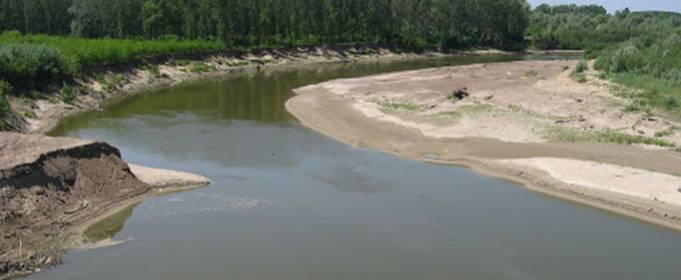 В Украине мелеют реки, в них исчезает рыба
