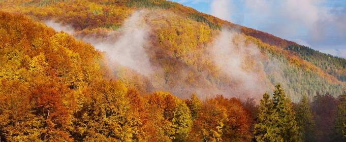Погода в Украине на пятницу, 23 октября