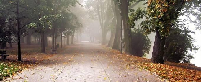 Погода в Україні на суботу, 24 жовтня