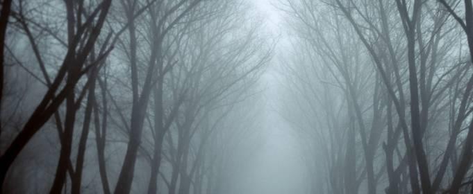 Прогноз погоди в Україні на листопад