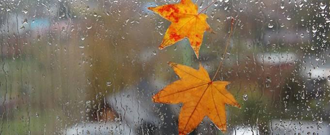 Погода в Украине на субботу, 31 октября