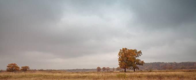 Погодні прикмети на 3 листопада