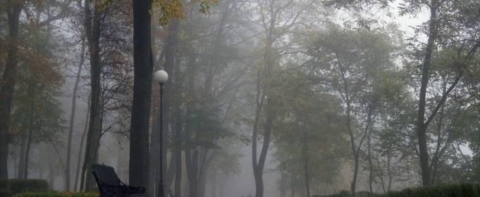 Погодные приметы на 7 ноября