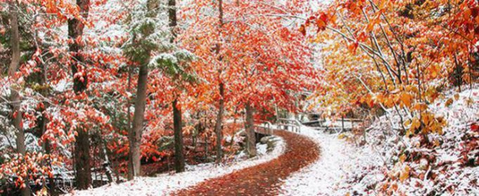 Погода в Украине на понедельник, 16 ноября