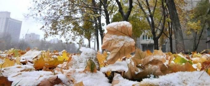 Погода в Україні на п'ятницю, 20 листопада