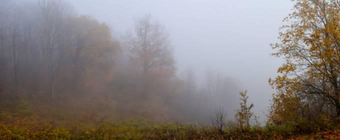 Pogoda w Polsce na 20.11.2020