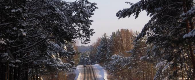 Погодные приметы на 22 ноября
