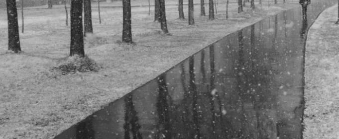 Погода в Украине на вторник, 24 ноября