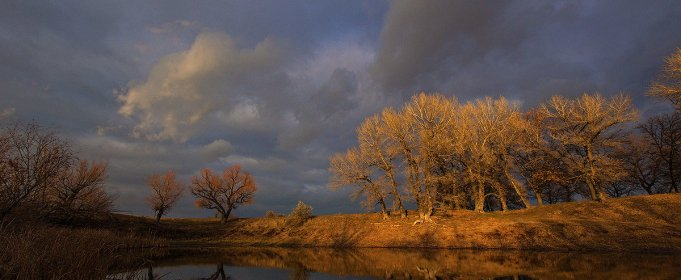 Погода в Україні на четвер, 26 листопада