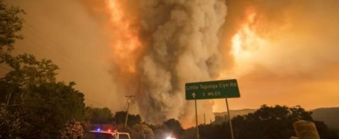 Жителі Каліфорнії можуть залишитися без електрики через лісові пожежі