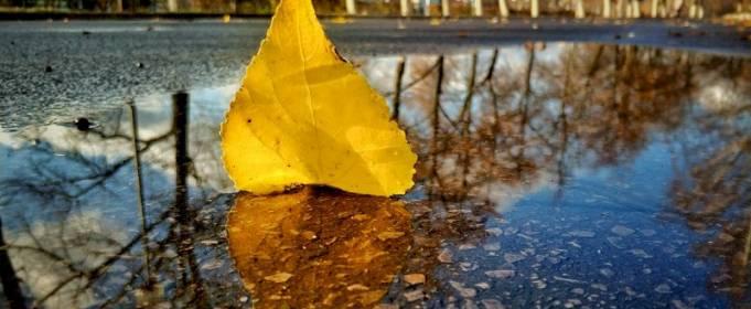 Погодные приметы на 27 ноября