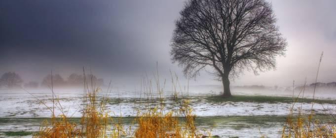 Погода в Украине на воскресенье, 29 ноября