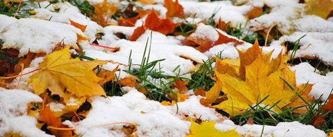 Погода в Украине на понедельник, 30 ноября