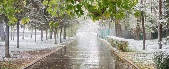 Pogoda w Polsce na 30.11.2020