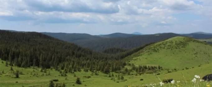 В Украине появится новый национальный парк в Карпатах
