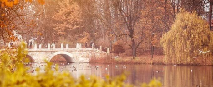 Pogoda w Polsce na 1.12.2020