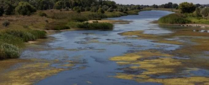 В Україні опинилася під загрозою зникнення одна з найчистіших річок Европи