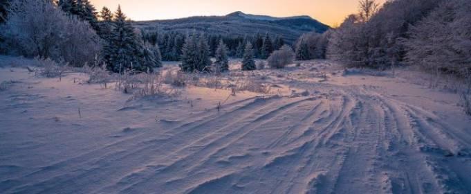 Погодные приметы на 14 декабря