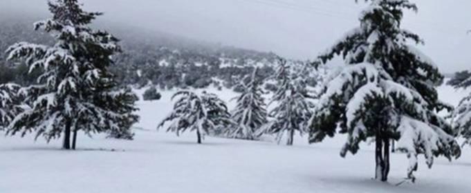Сахара покрылась снегом