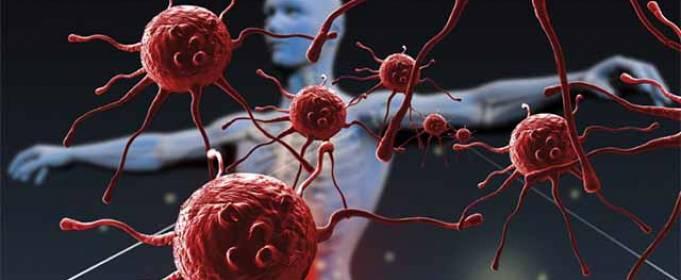 Что разрушает наш иммунитет?