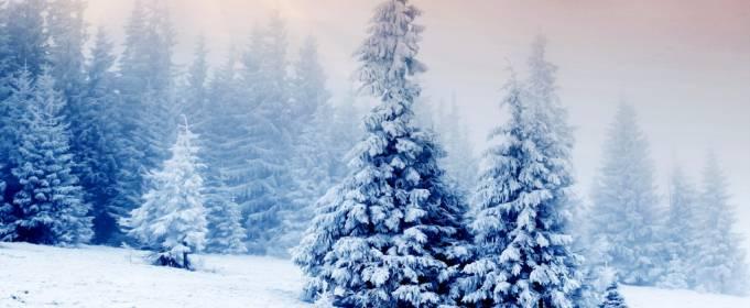 Погода в Україні на неділю, 17 січня