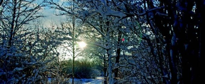 Погода в Україні на понеділок, 18 січня