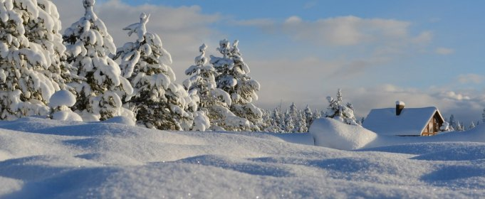 Погодные приметы на 20 января