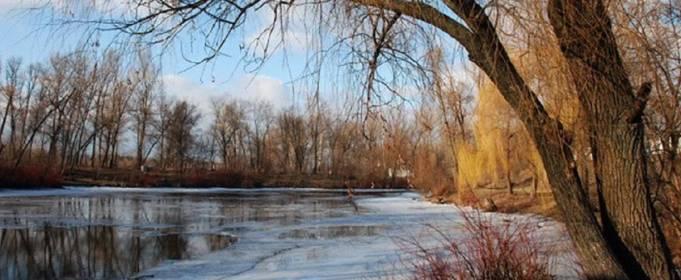 Погода в Україні на п'ятницю, 22 січня