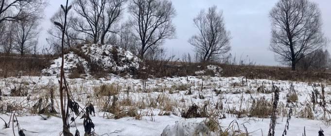 Погода в Україні на суботу, 23 січня