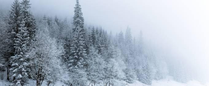 Погодные приметы на 24 января