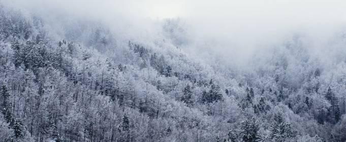 Погода в Украине на понедельник, 25 января