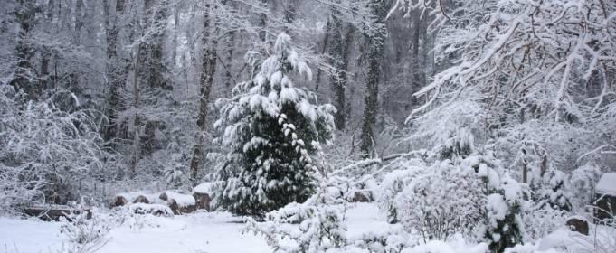 Погодные приметы на 28 января