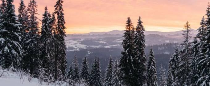 В Ивано-Франковской и Закарпатской областях возможен сход лавин