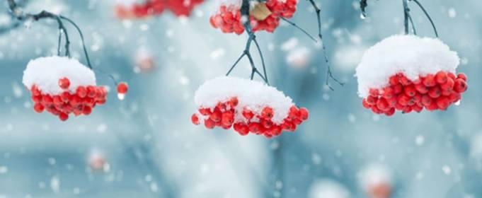 Погода в Украине на понедельник, 1 февраля