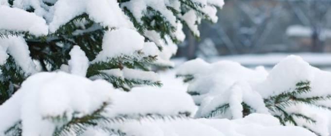 Погода в Украине на понедельник, 8 февраля