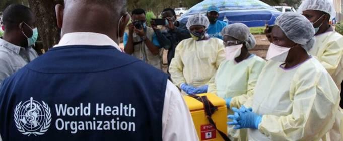В Демократической Республике Конго во время вспышки чумы погибли более 30 человек
