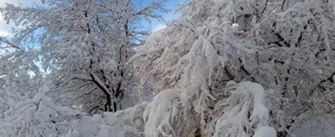 Погодні прикмети на 24 лютого