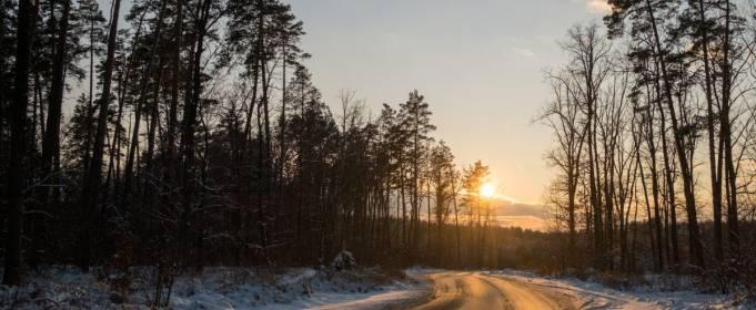 Погода в Украине на четверг, 25 февраля
