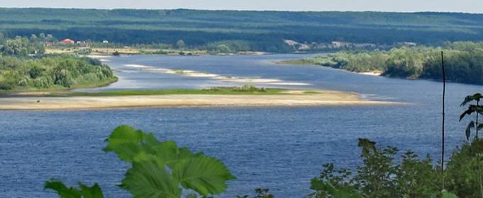 В речном бассейне Днепра обнаружили 161 загрязнитель